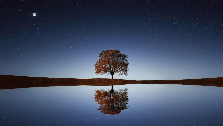 Meditação: descansar a mente ocupada